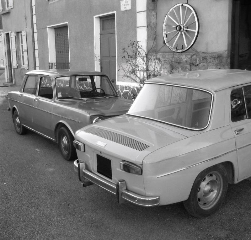 FIFI    ( parc automobile) Img_6111