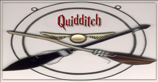 Campos de Quidditch