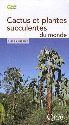19e Foire aux plantes rares à Bézouotte (21) les 11 & 12 mai 2013 Cactus10