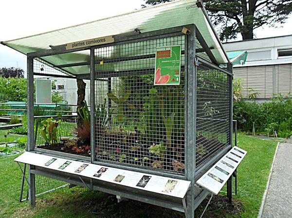 Bourse aux plantes carnivores IV 2013 - Page 2 Cage11