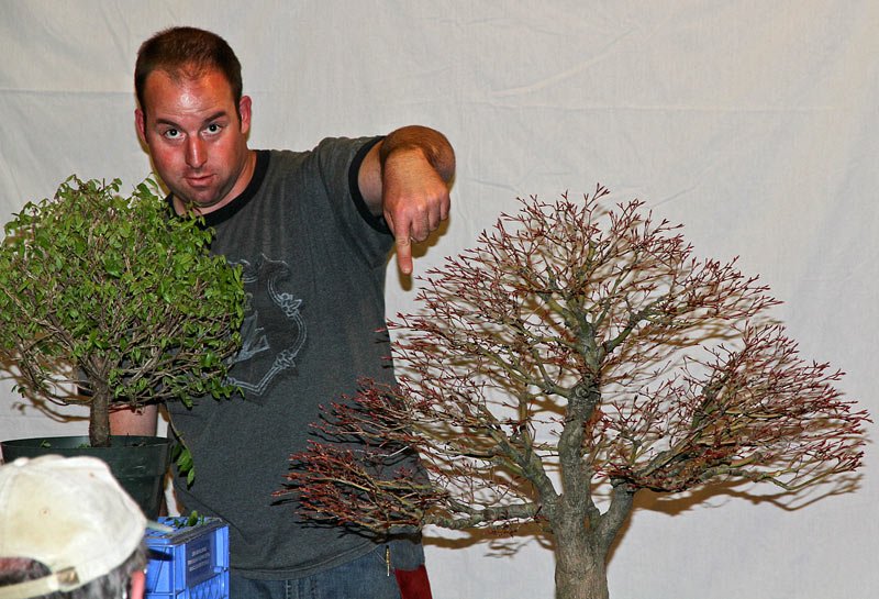 OWEN REICH LECTURE DEMO AT UPSTATE NY BONSAI SOCIETY Owen-110