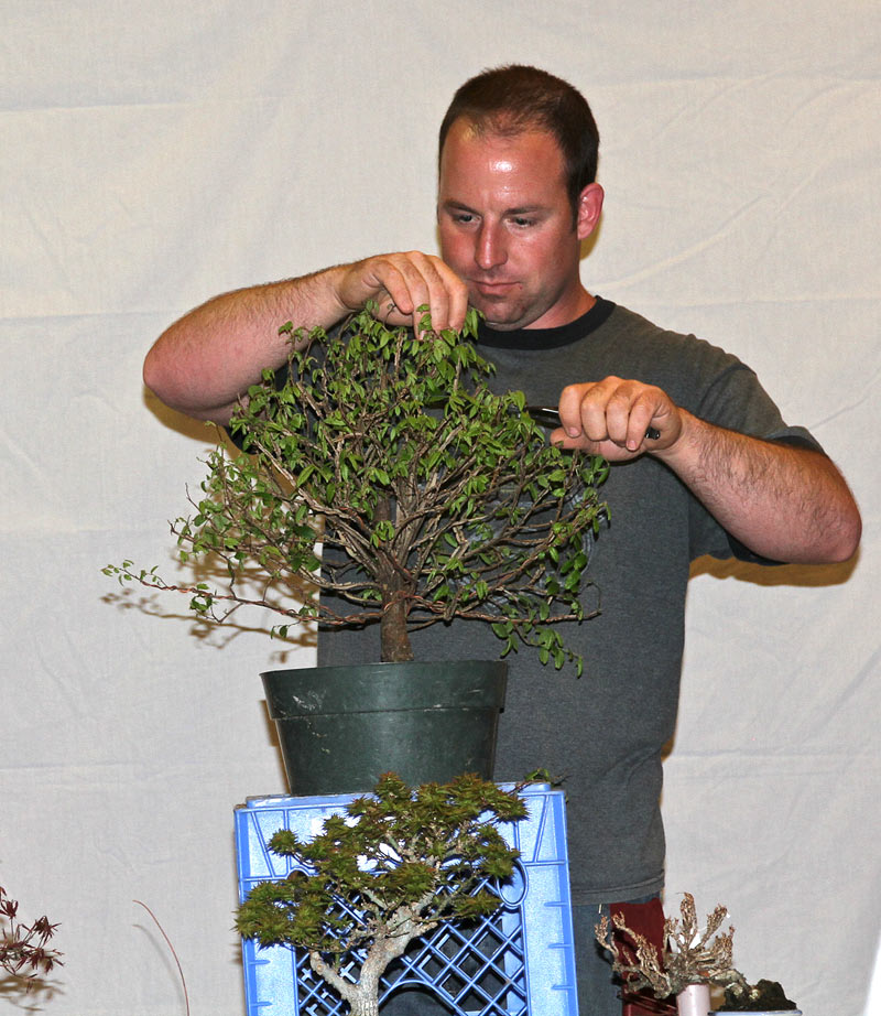 OWEN REICH LECTURE DEMO AT UPSTATE NY BONSAI SOCIETY Owen-410