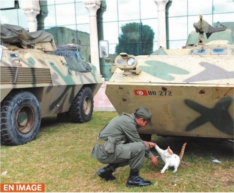 موسوعة الجيش التونسي  Sans_t10