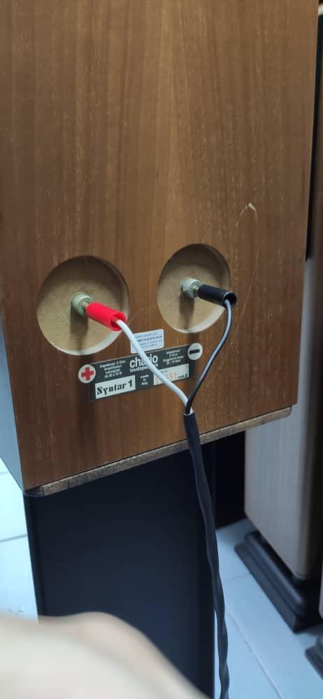 Chario Synthar 1 MKII Speaker 96d46710