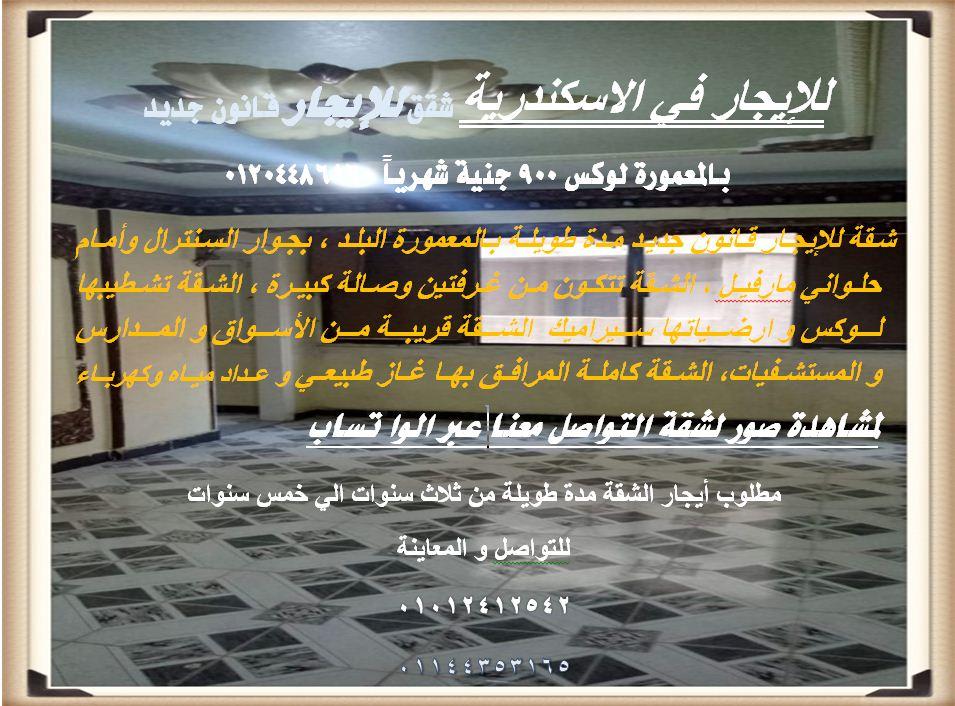 للإيجار في الاسكندرية شقق للإيجار قانون جديد بالمعمورة لوكس 900 جنية شهرياً 01204486160 I_aa_911
