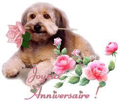 Bon anniversaire Aragone Images17