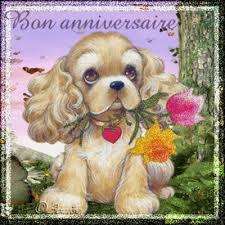Joyeux anniversaire Pandi Images25