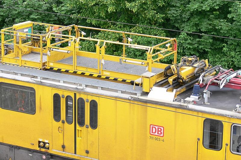 Der Fenstergucker P1290213