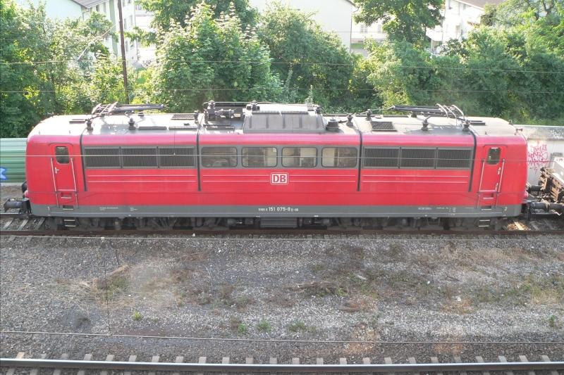Der Fenstergucker P1480210