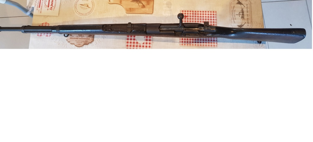 Mauser chilien 110