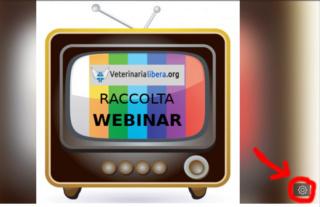 Wiki con webinar e videoconferenze, video di formazione veterinaria senza registrazione  Editin10