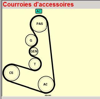 courroie d accessoire Couroi10