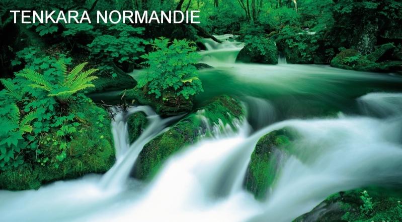 Tenkara Normandie 565610