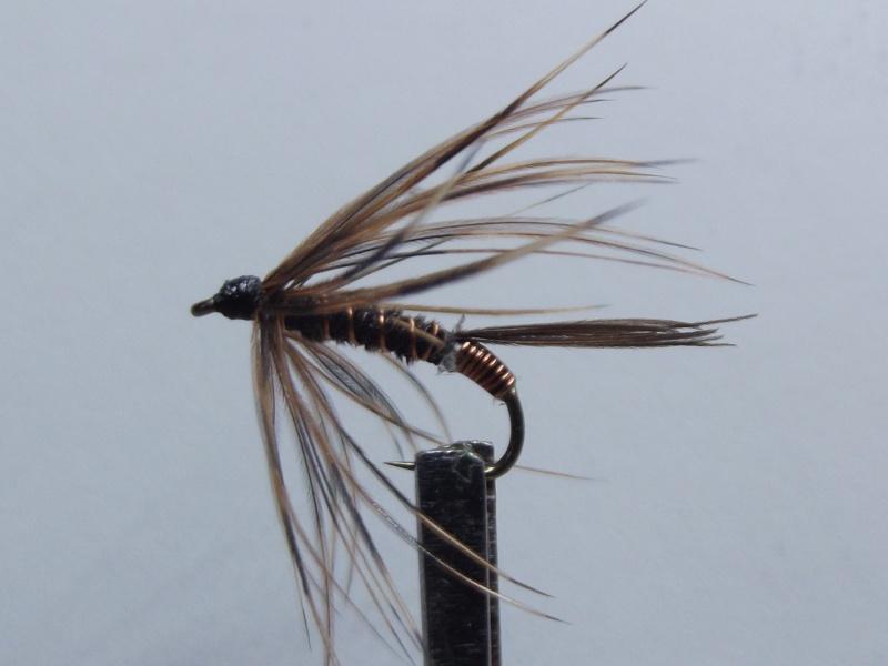 La Pheasant tail Dscf0210