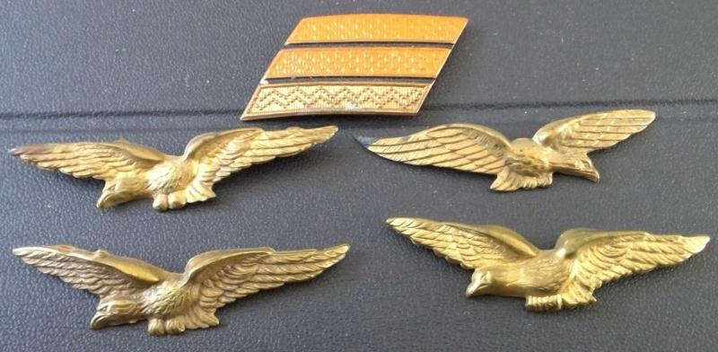 À identifier insigne police de l'armée de l'air ? Aigle ? Win_1731