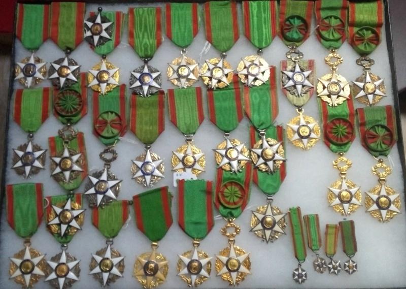 Différencier médaille mérite agricole  Win_1866