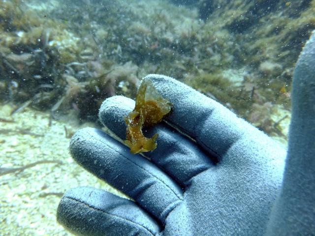 Menorca trip June 2013 Dscf2314