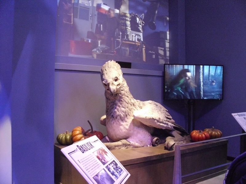 Studio Tour : The Making of Harry Potter - Page 4 30010