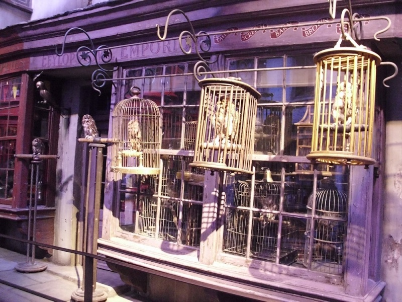 Studio Tour : The Making of Harry Potter - Page 4 311b10