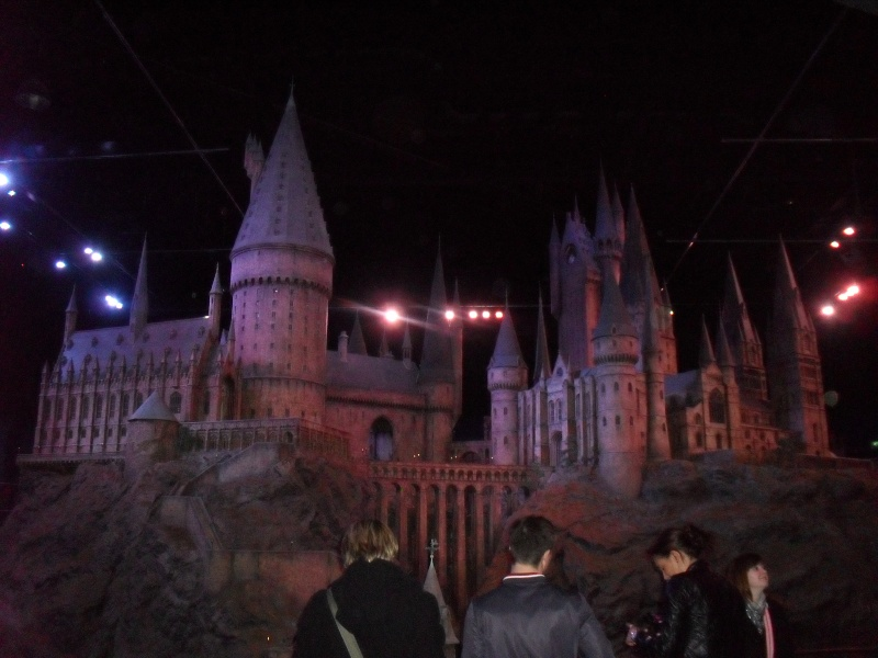 Studio Tour : The Making of Harry Potter - Page 4 365c10