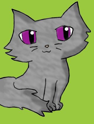 Fiche de Partenaire _ The Secret of Cats Esprit10