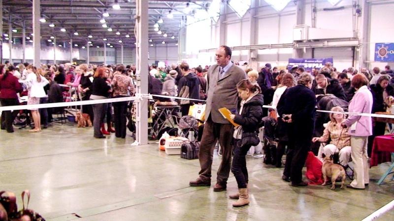 Москва 13.02.11 - 3 выставки в Сокольниках Dsc05935