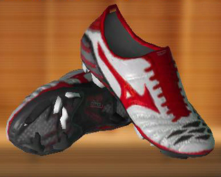 Mizuno Wave Ignitus Japan Edition Football Boots (by Kay) User_121