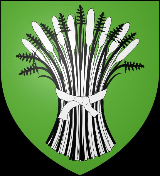 Le roseau Sachev10