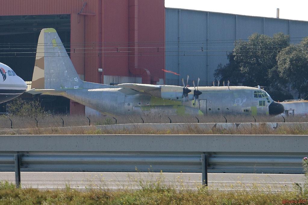 GV (Check-D) des C-130 - Page 2 C13011