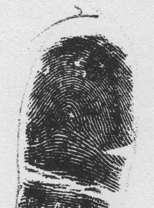 X - WALT DISNEY - One of his fingerprints shows an unusual characteristic! - Page 2 2-21-210
