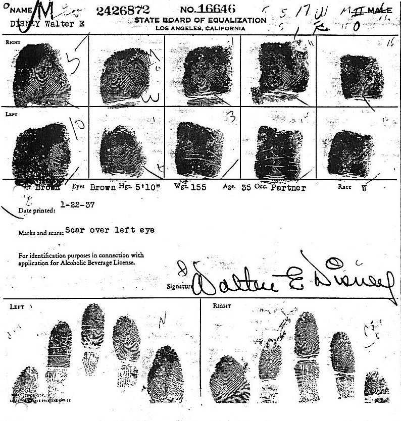 X - WALT DISNEY - One of his fingerprints shows an unusual characteristic! Finger11