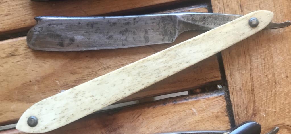 Echalier à  st flour 20994310