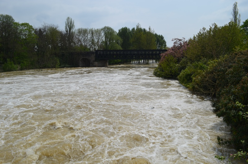 Inondations en Côte d'Or Dsc_0010