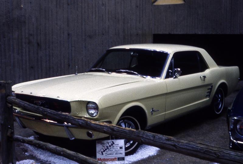 Montréal Mustang dans le temps! 1981 à aujourd'hui (Histoire en photos) 1981mm39