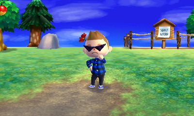 Animal Crossing: New Leaf Hni_0010
