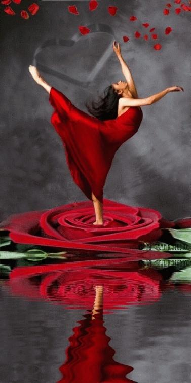La Rose Et Le Vent Xga34c10