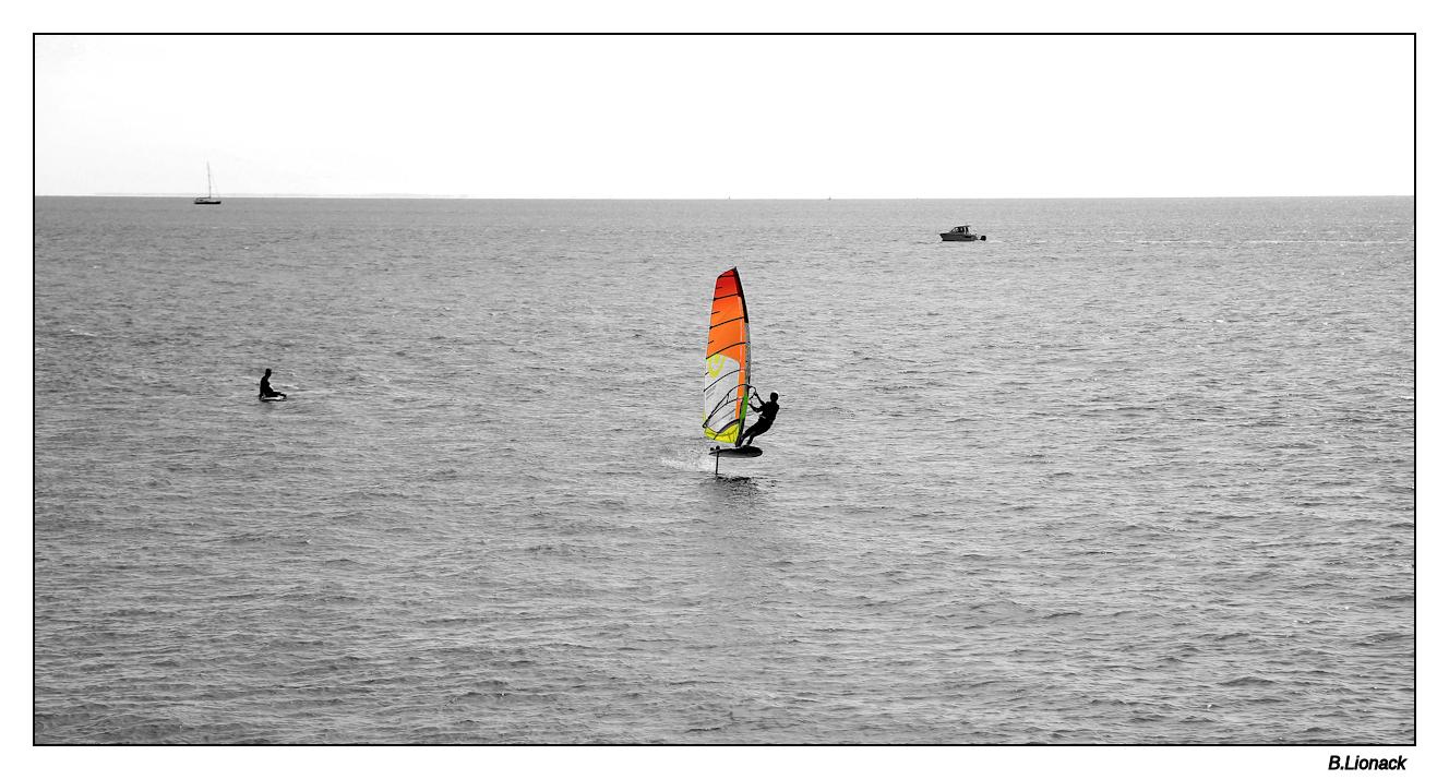 Le Havre en été Havre018
