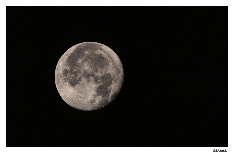 Pleine lune ce matin... Img_8310