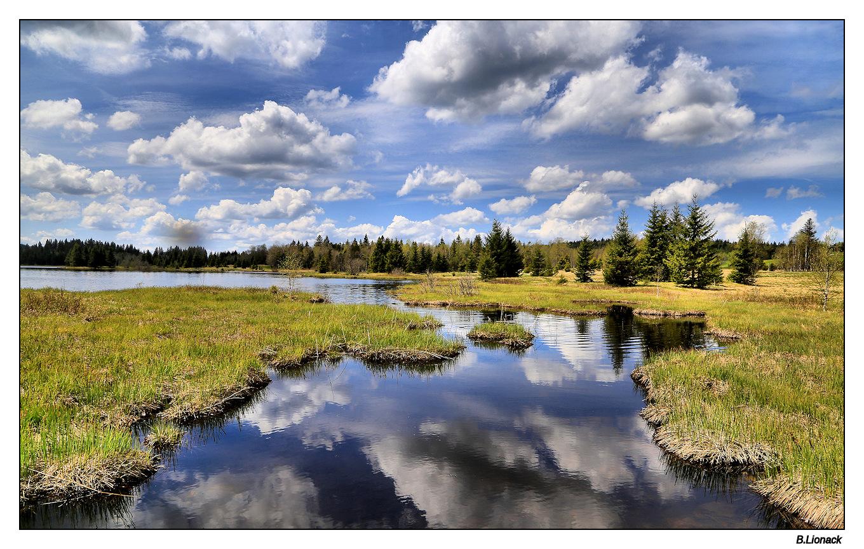 Autour du lac de Bellefontaine Printe10