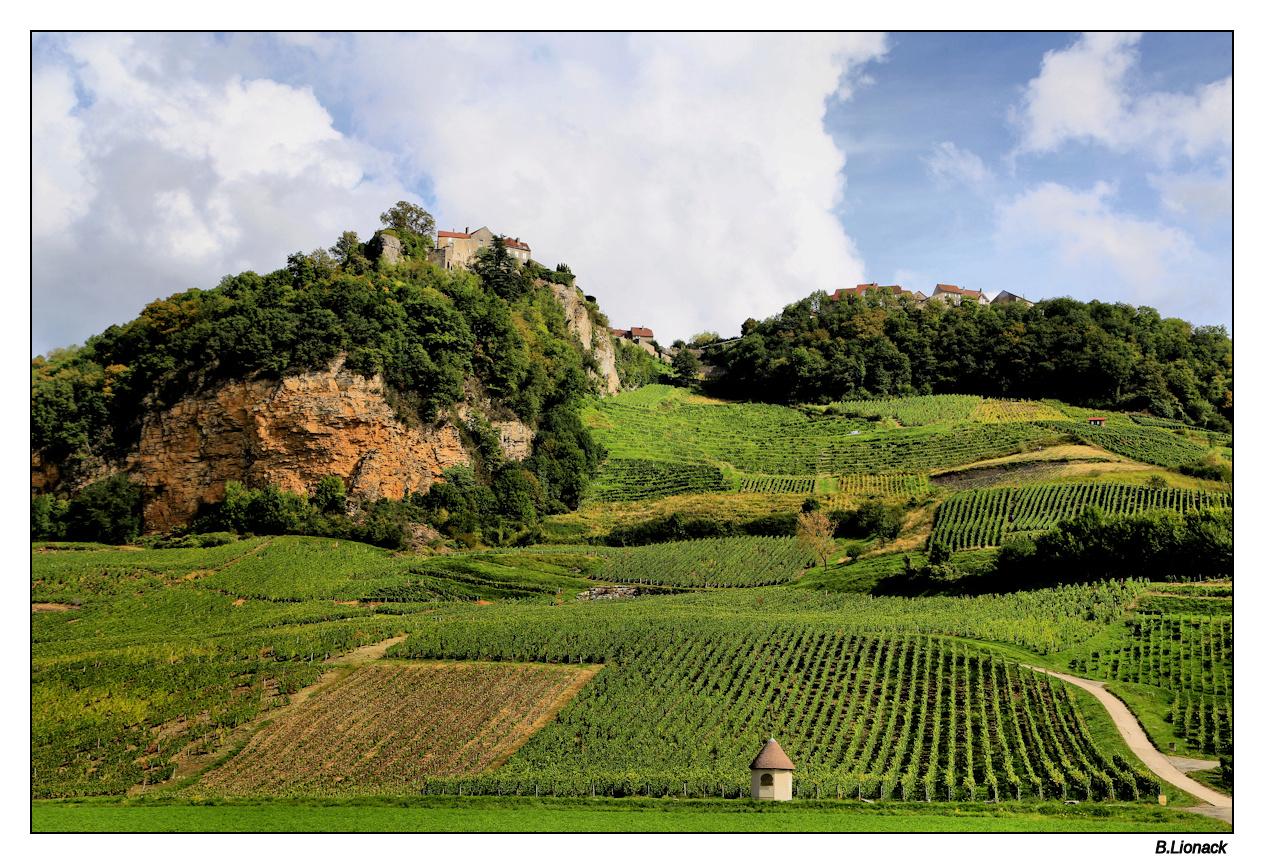 Balade au pays du vin jaune Vignes10