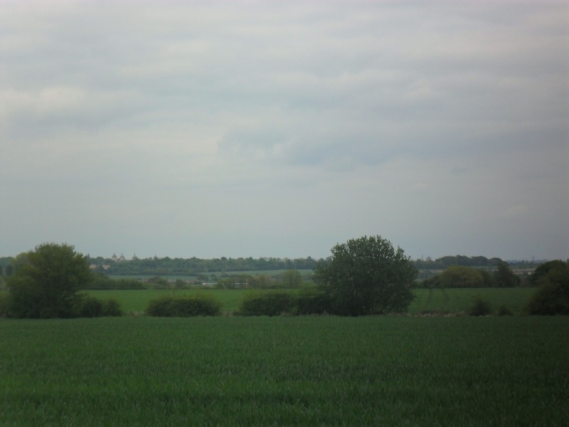 Mon voyage en Grande Bretagne - 3 - La campagne anglaise Sam_2513