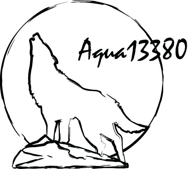 [résolu]Essai de Logo pour photo Logo_a10