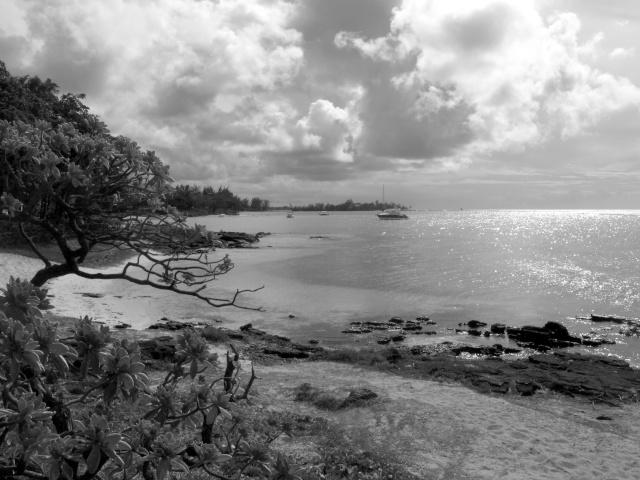 Une G shock  à l'île Maurice Img_6110