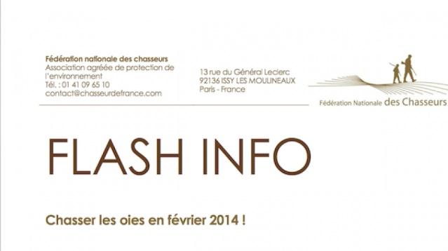 Flash Info : Chasser les oies en février 2014 ! D4ece710