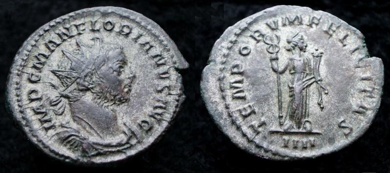Tacite, Florien, Carus, Numérien, Carin - Page 3 Florie10