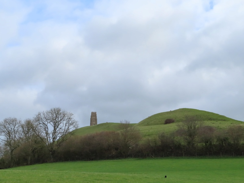 Glastonbury in March! Tor_110