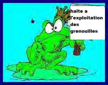 Rassemblement Belgistan 2014 - Page 3 40081010