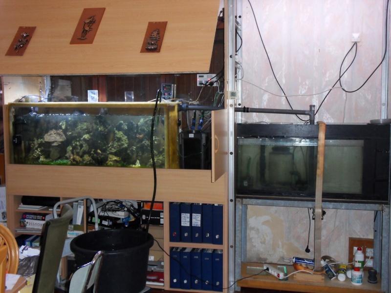 un aquarium d'eau de mer et ma fish-room sur aqua51 Sdc10510