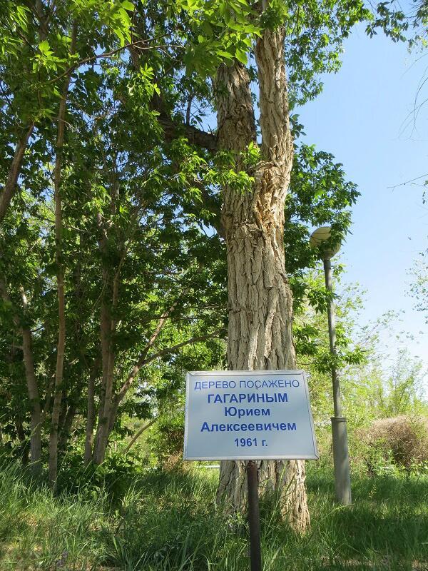 Lancement, mission & retour sur terre Soyouz TMA-09M  Soyuz_34