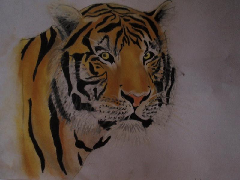 Crayons et feutres Pc220610